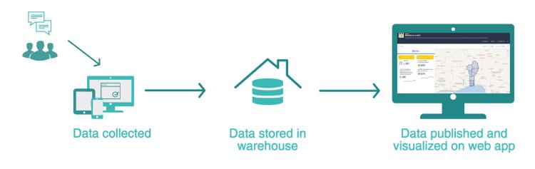 data-viz-process